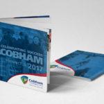Cobham-Prospectus-3