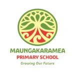 Maungakaramea-Primary-School